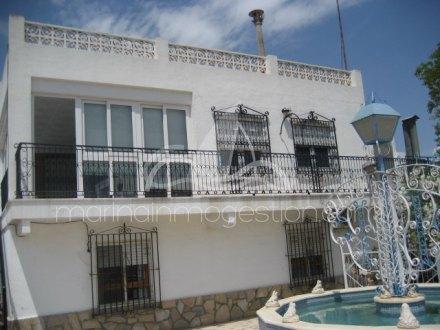 Chalet independiente, Situado en Elche Alicante 5