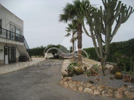 Chalet independiente, Situado en Elche Alicante 18