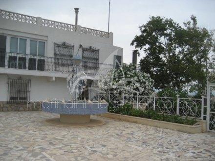 Chalet independiente, Situado en Elche Alicante 21