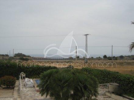 Chalet independiente, Situado en Elche Alicante 25