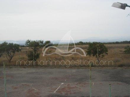 Chalet independiente, Situado en Elche Alicante 26