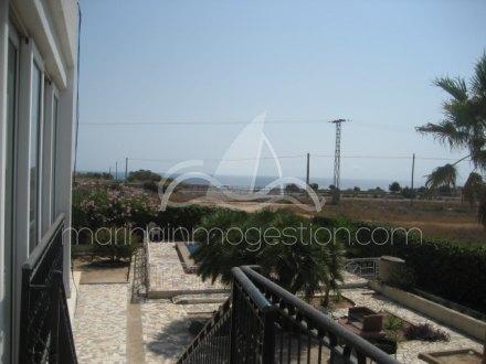 Chalet independiente, Situado en Elche Alicante 34