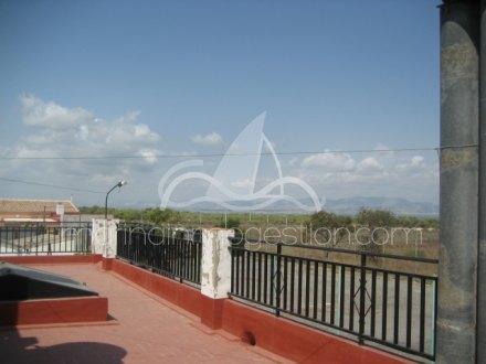 Chalet independiente, Situado en Elche Alicante 50