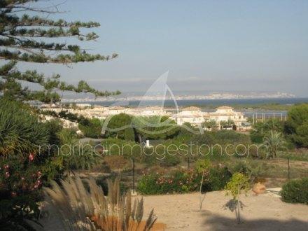 Chalet independiente, Situado en Elche Alicante 2