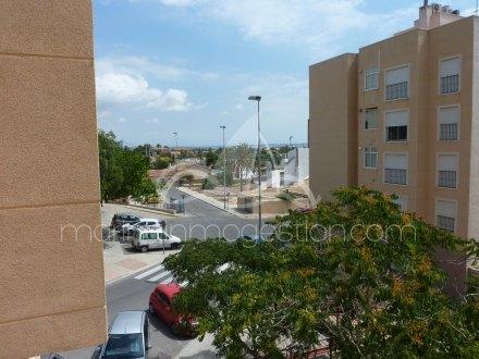 Apartamento, Situado en Elche Alicante 9