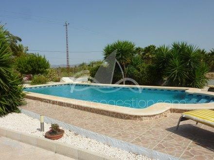 Chalet independiente, Situado en Elche Alicante 19