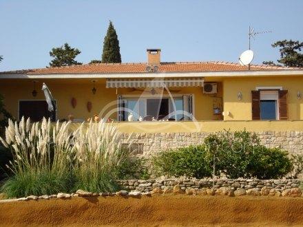 Chalet independiente, Situado en Elche Alicante 1