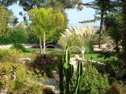 Chalet independiente, Situado en Elche Alicante 8