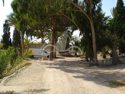 Chalet independiente, Situado en Elche Alicante 29