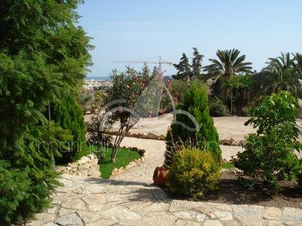 Chalet independiente, Situado en Elche Alicante 28