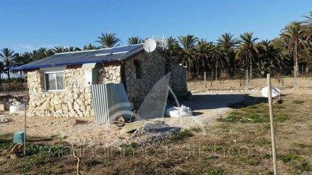Finca, Situado en Elche Alicante 8