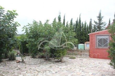 Finca, Situado en Monóvar/Monòver Alicante 17