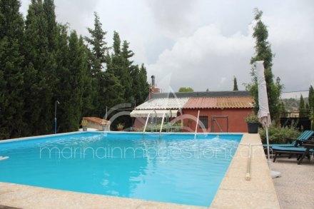 Finca, Situado en Monóvar/Monòver Alicante 20