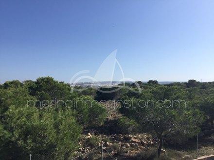 Chalet independiente, Situado en Elche Alicante 12