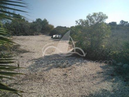 Terreno, Situado en Santa Pola Alicante 3