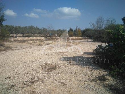 Terreno, Situado en Santa Pola Alicante 4