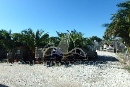 Chalet independiente, Situado en Elche Alicante 15