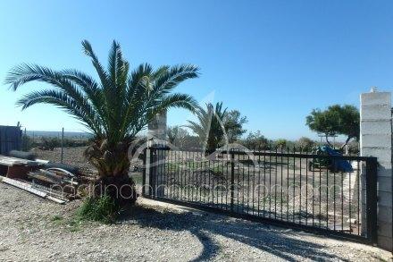 Chalet independiente, Situado en Elche Alicante 13
