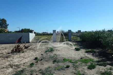 Chalet independiente, Situado en Elche Alicante 11
